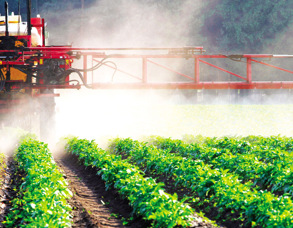 Preservative and Pesticides Testing